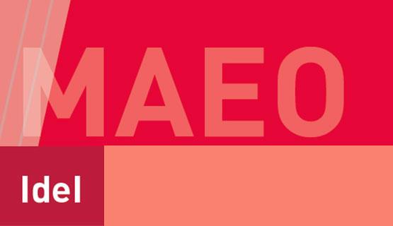 Inscripción para la Maestría en Estudios Organizacionales  (MAEO)