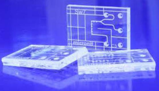 Seminario Microfluídica, laboratorios en un chip