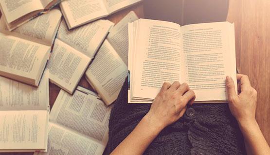 Publicaciones relacionadas con el Profesorado en Lengua y Literatura