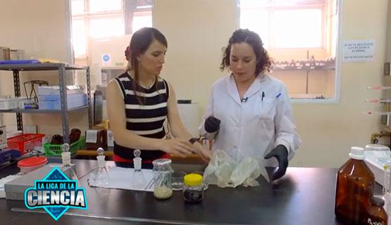 Huertas de plástico. El área de Química Ambiental en la Liga de la Ciencia