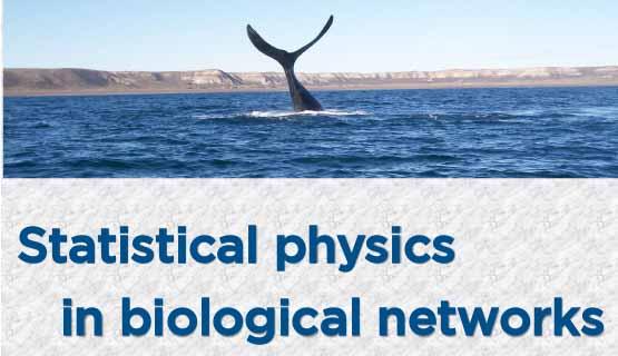 Encuentro de física estadística y sistemas biológicos
