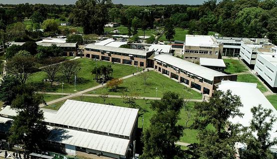 Seguir deliberando | Los Consejos de Instituto de la Universidad volvieron a sesionar