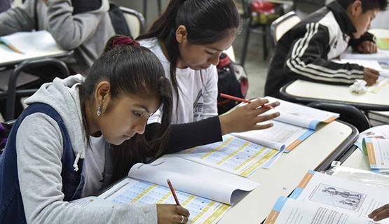 Pandemia, presencialidad y mundo digital: ¿la escuela en disputa? |  Flavia Terigi en Télam