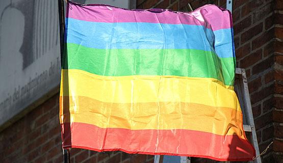 El Consejo Superior aprobó lineamientos para la inclusión Travesti, Transexual y Transgénero