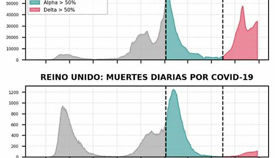 Variante Delta, qué pasará en Argentina   Nicolás Olszevicki en Página/12